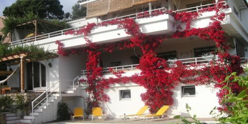 Nilaya Casa
